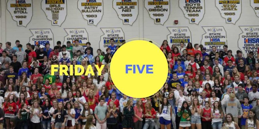 The+Forest+Scout+Friday+Five+3