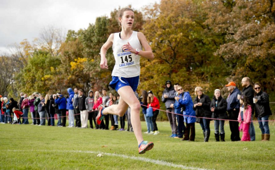 Boys and Girls Cross Country Fight Hard in NSC Championships