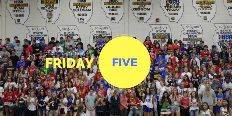 The+Forest+Scout+Friday+Five+83