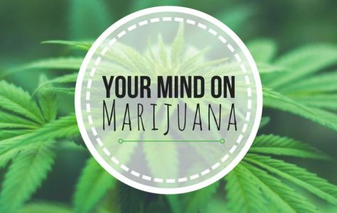 For the Health of It: Your Mind on Marijuana