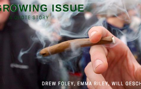 Growing Issue: Marijuana Quote Story