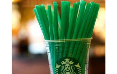 The Plastic Straw Movement- We Can Do More
