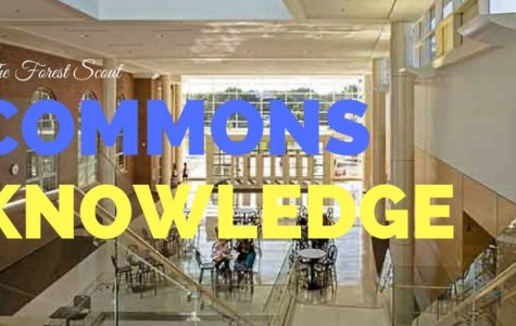 Commons Knowledge Goes to Prom and the Cubs Game + Announcement
