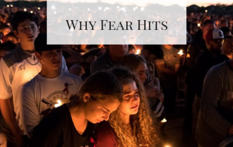 Why Fear Hits