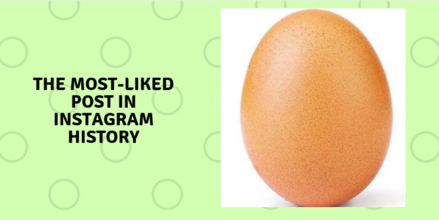 Who+is+this+egg%3F