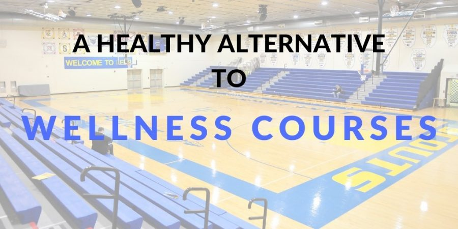 A Healthy Alternative to Wellness Courses