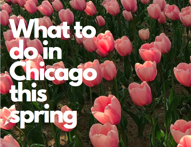 What to do in Chicago this spring