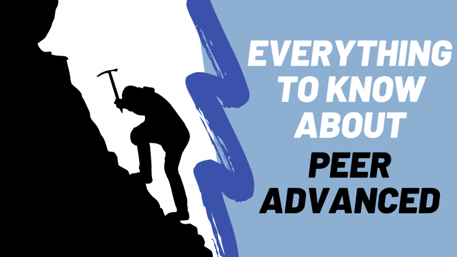 Everything to know about Peer Advanced