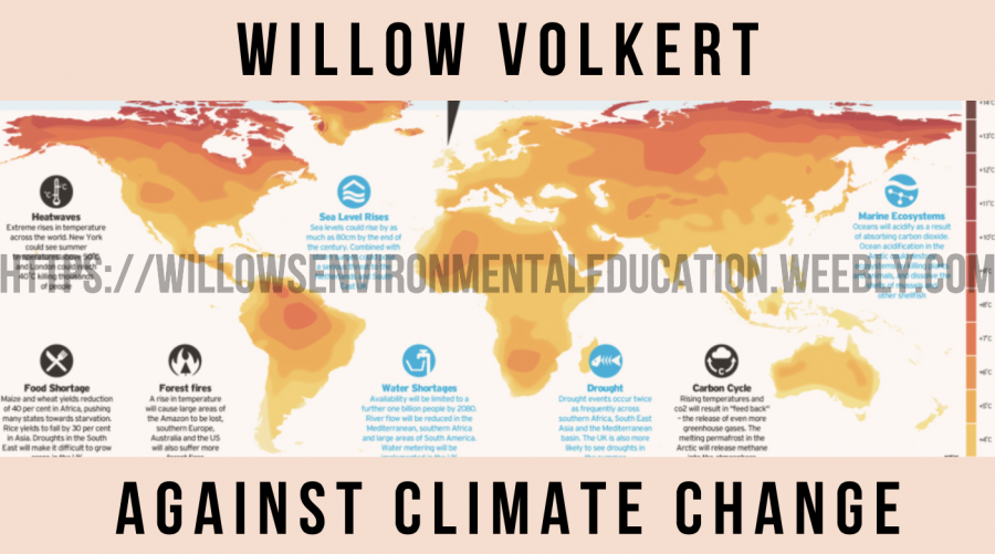 Willow Volkert's New Blog Against Climate Change