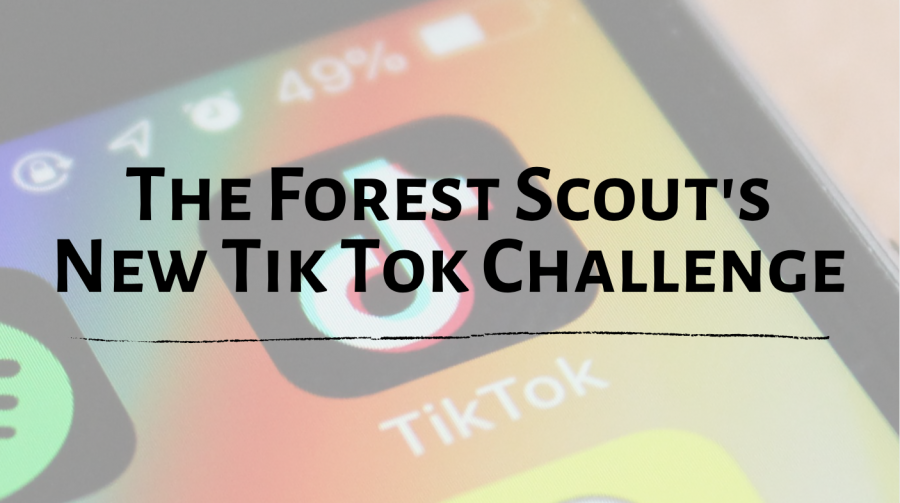 The+Forest+Scout+Tik+Tok+Challenge
