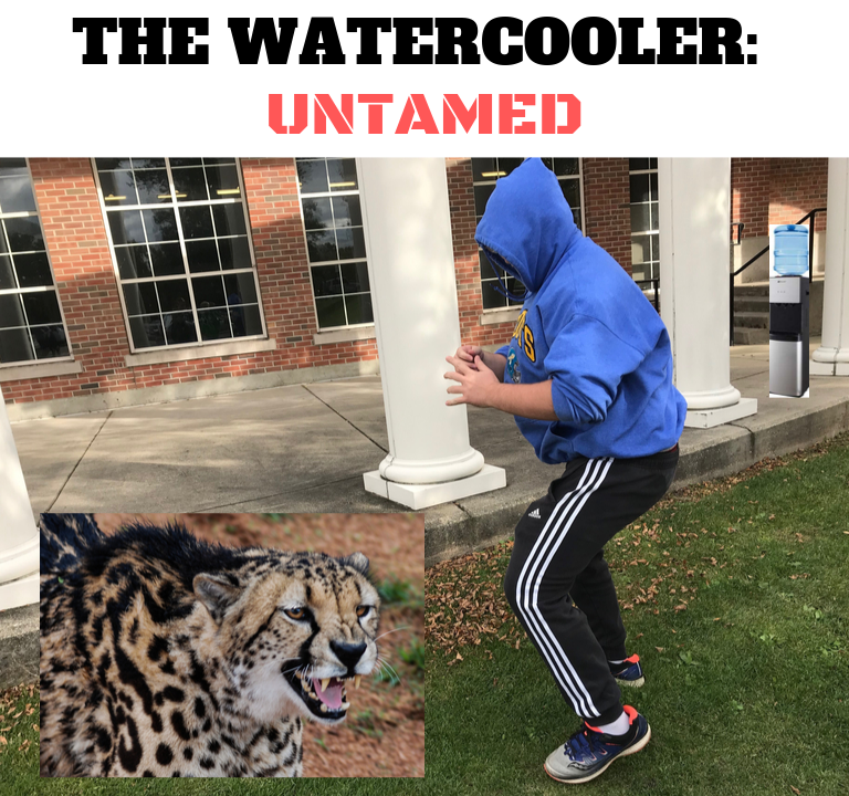 The Watercooler: Could Billy Gardner Defeat a Cheetah One-on-One in an Octagon?