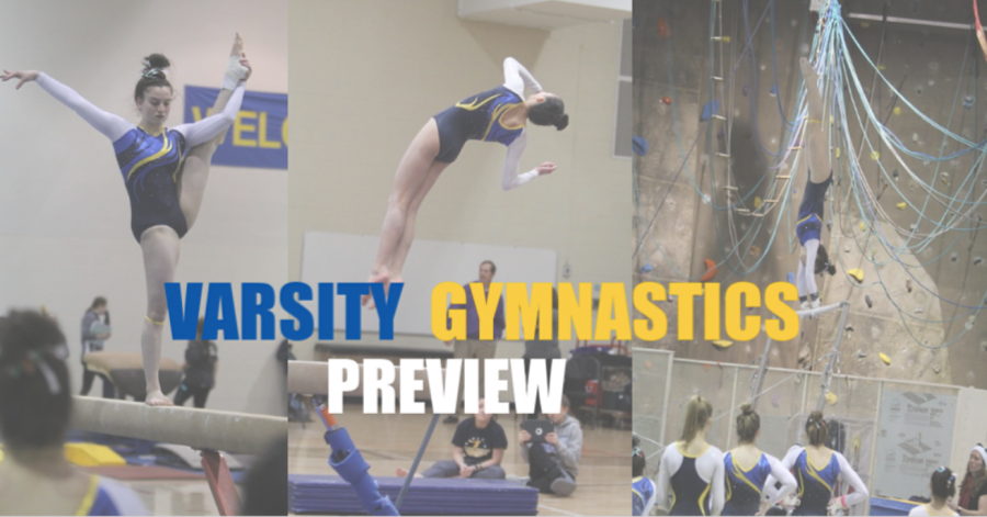 Lake Forest Varsity Girls Gymnastics Preview