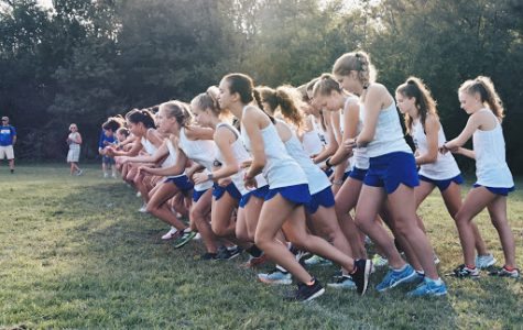 An Ode to Cross Country