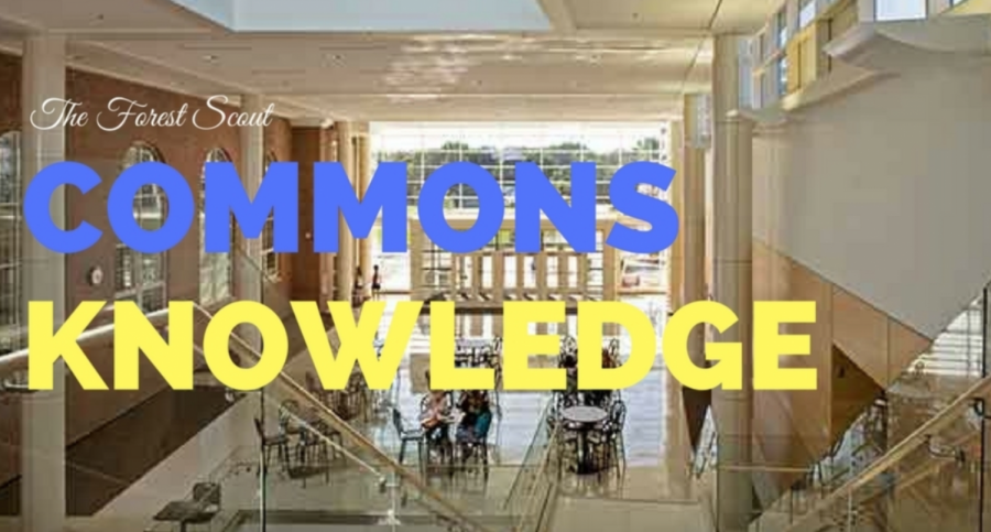 Commons Knowledge: Thanksgiving Edition