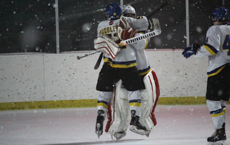 Boys Hockey Pulls Off Upset Bid Over #3 St. Viator in Winter Classic
