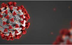 The Coronavirus - Modeling the Spread