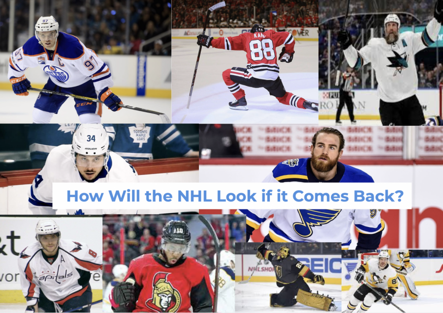 Options Are Being Weighed for the National Hockey League's Uncertain Future