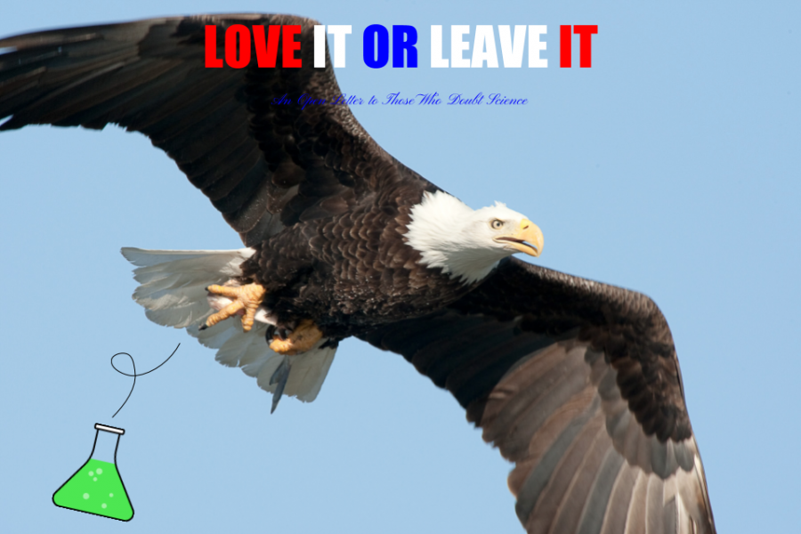 Love+It+or+Leave+It