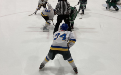A fight after the hockey game against Libertyville is under investigation by Vernon Hills police.