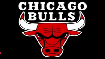 Chicago Bulls Preseason Update